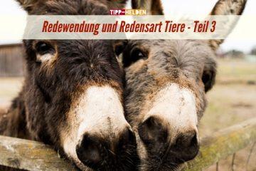 Tipp-Helden Redewendung und Redensart Tiere - Teil 3